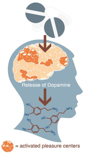brain on opiates dopamine