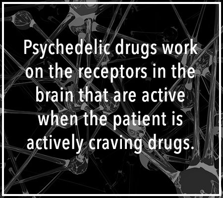 psychedelic drugs and the brain