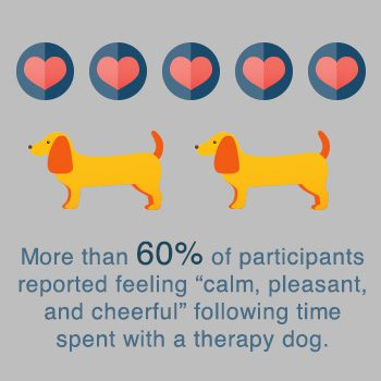 therapy_dog