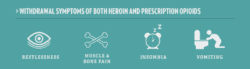 the withdrawal symptoms of using both heroin and prescription opioids range from feeling restless to experiencing nausea and vomiting. the most common withdrawal is insomnia. Anyone trying to recovery from substance abuse will experience similar withdrawals. its important to recognize the sings.